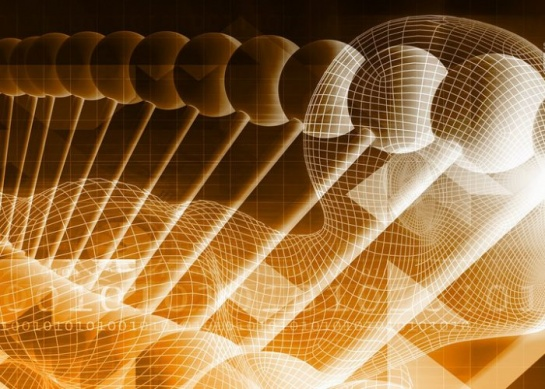 Big Data, Great Potential: Why We Need to Do More with Big Data