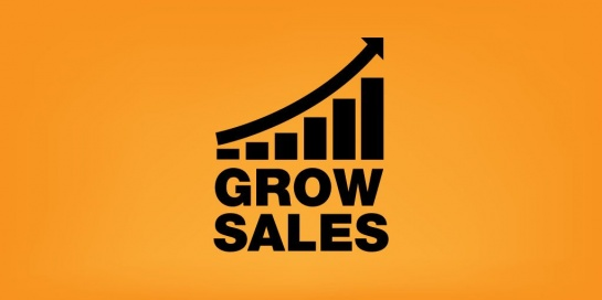 How Salespeople Can Adapt and Thrive in a Rapidly Changing Sales Profession